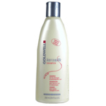 GOLDWELL Kerasilk Rich Care Shampoo for Dry, Damaged & Unmanageable Hair 8.4oz/250ml