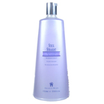 GRAHAM WEBB Stick Straight Smoothing Shampoo 33.8oz/1L